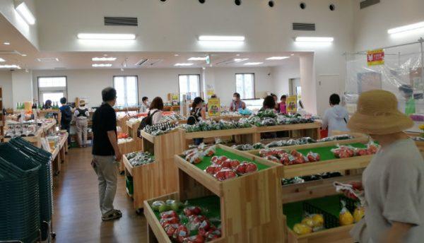 マキノピックランドの野菜直売所